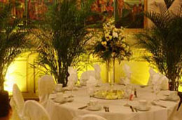Plants and foliage for wedding receptions