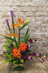 Design Your Own Arrangement
